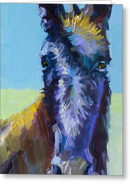 Burro Stare Greeting Card