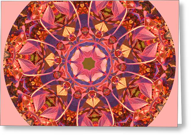 Burst Of Fall Mandala Greeting Card