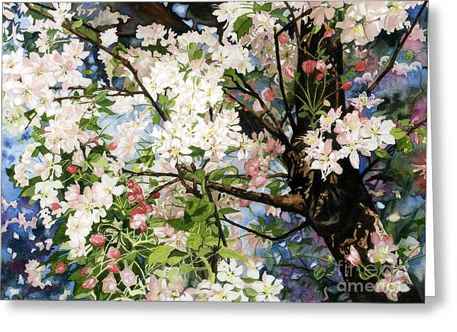 Burst Of Spring Greeting Card by Barbara Jewell