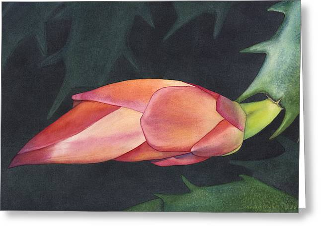 Bursting Forth Greeting Card by Sandy Haight