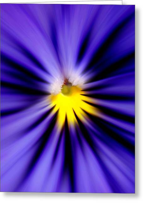 Bursting With Blue Pansy Greeting Card
