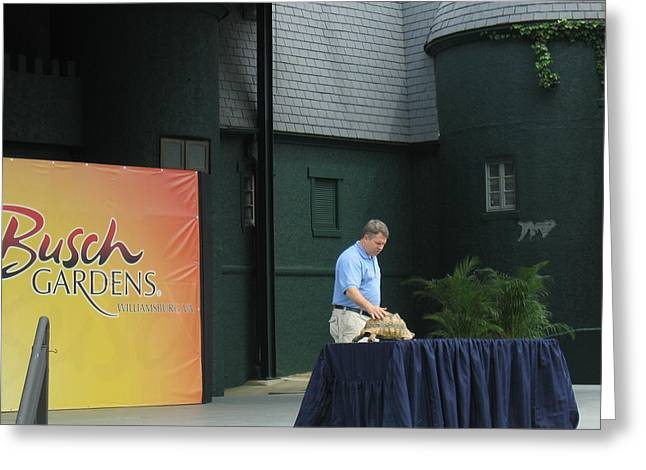Busch Gardens - Animal Show - 12128 Greeting Card by DC Photographer