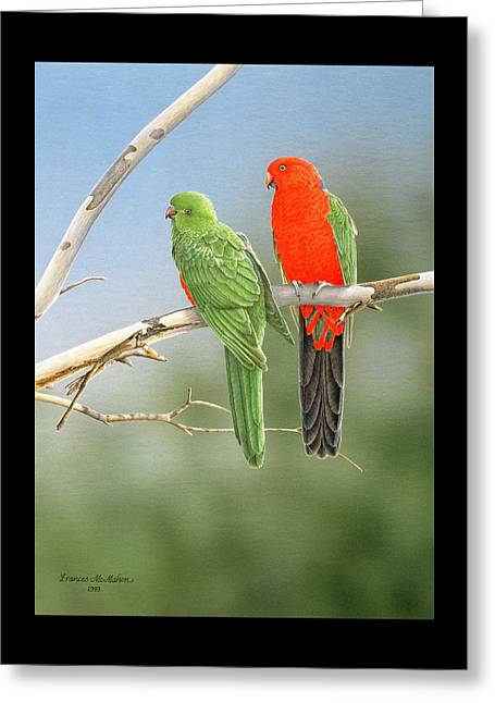 Bush Monarchs - King Parrots Greeting Card