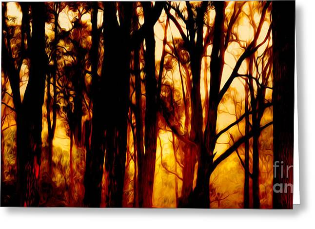 Bushfire Greeting Card by Phill Petrovic