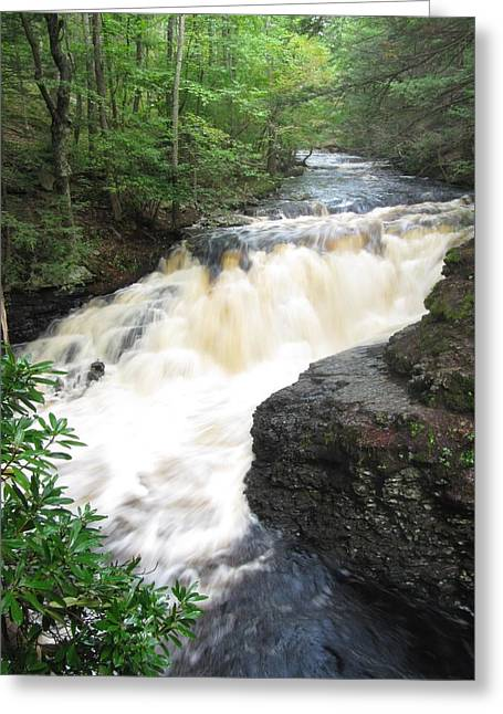 Greeting Card featuring the photograph Bushkill Rapids by Richard Reeve