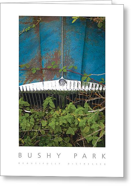 Bushy Park Beautifully Distressed Poster Greeting Card by David Davies