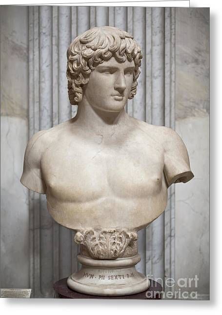Bust Of Antinous Greeting Card by Roberto Morgenthaler