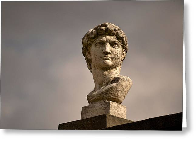 Greeting Card featuring the photograph Bust Of Apollo by Nadalyn Larsen
