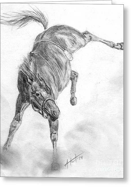 Busted Bronc Greeting Card by Audrey Van Tassell