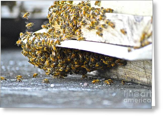 Greeting Card featuring the painting Busy Bees by Laura Forde