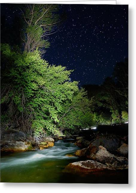 Greeting Card featuring the photograph Busy Night by David Andersen