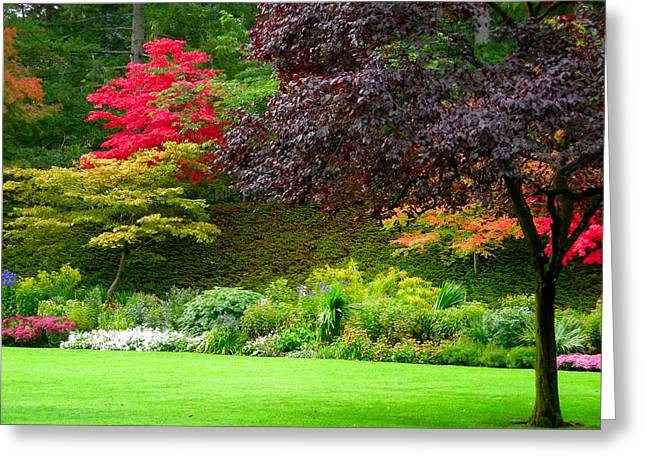 Butchart Gardens Lawn And Tree Greeting Card