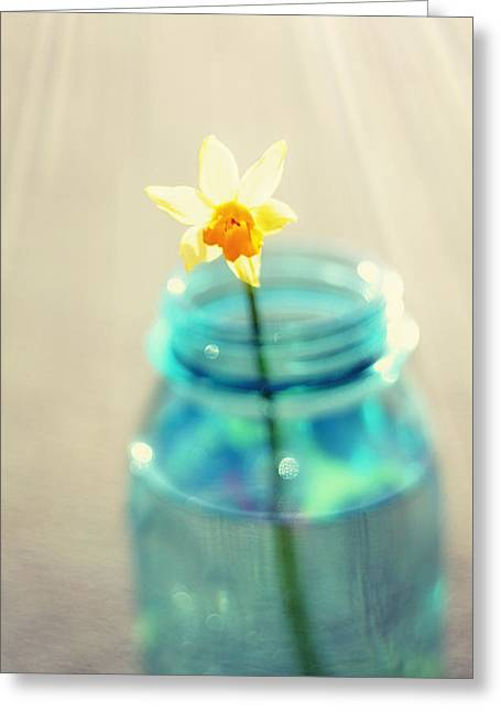 Buttercup Photography - Flower In A Mason Jar - Daffodil Photography - Aqua Blue Yellow Wall Art  Greeting Card by Amy Tyler