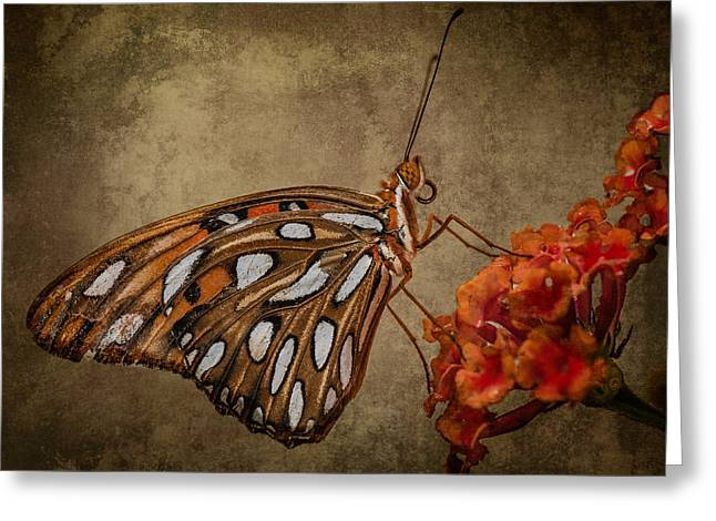 Butterflies Are Free Greeting Card by Linda Karlin