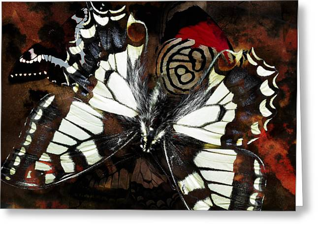 Butterfly Abstract Red Greeting Card by Lynda Payton