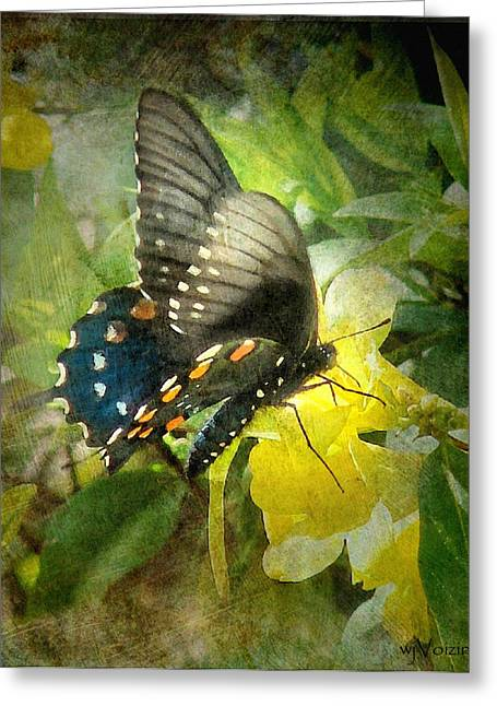 Butterfly And Jasmine Greeting Card