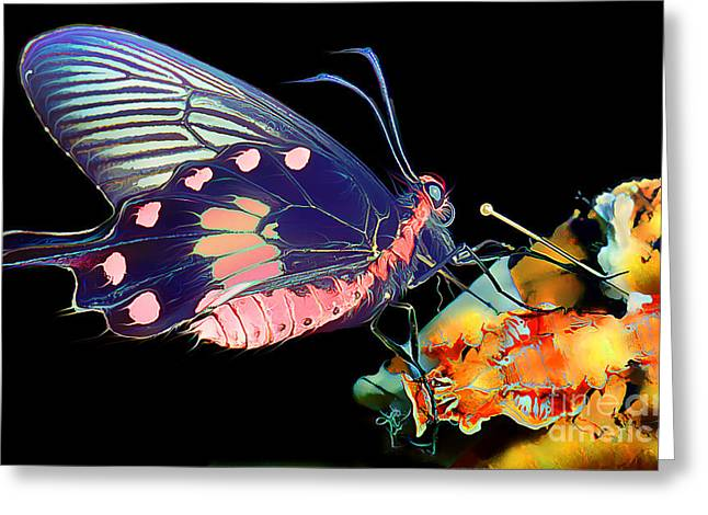 Butterfly Brushed In Water And Wind Greeting Card