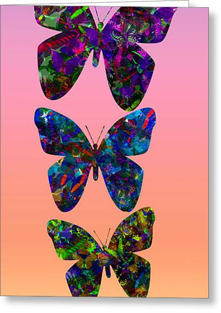 Greeting Card featuring the photograph Butterfly Collage IIII by Robert Meanor