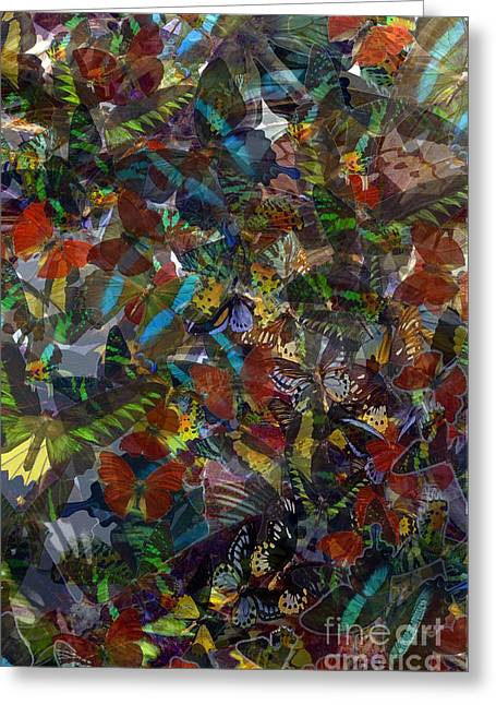 Greeting Card featuring the photograph Butterfly Collage by Robert Meanor