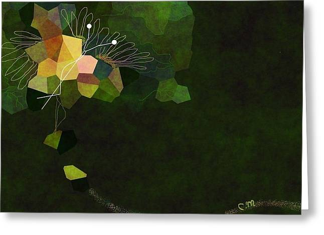 Butterfly Colors Greeting Card by Christine Mulgrew