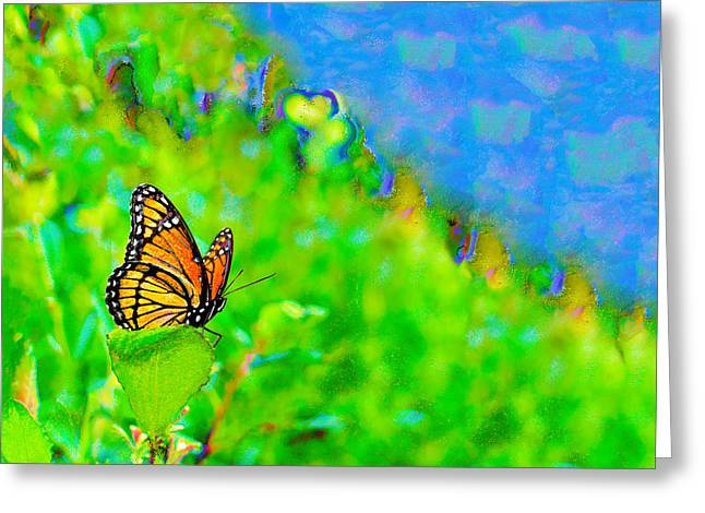 Butterfly Fantasy Greeting Card by Marianne Campolongo