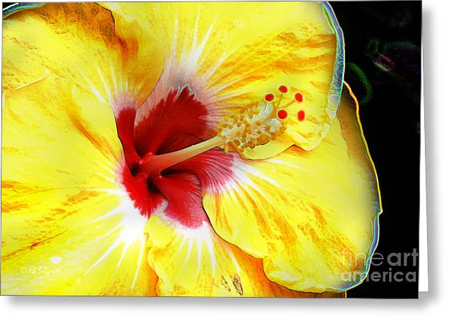 Butterfly Garden 07 - Hibiscus Greeting Card