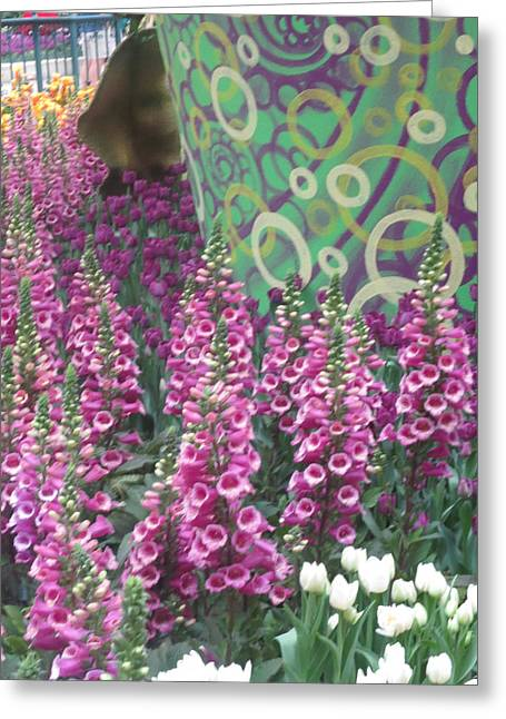 Butterfly Garden Purple White Flowers Painted Wall Greeting Card by Navin Joshi