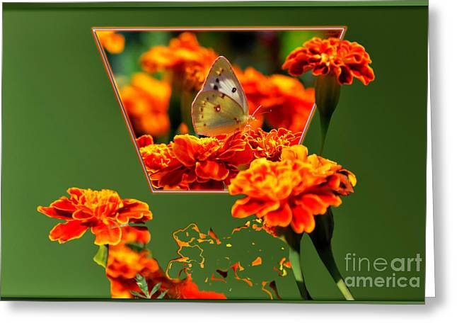 Butterfly In A Sea Of Orange Floral 02 Greeting Card
