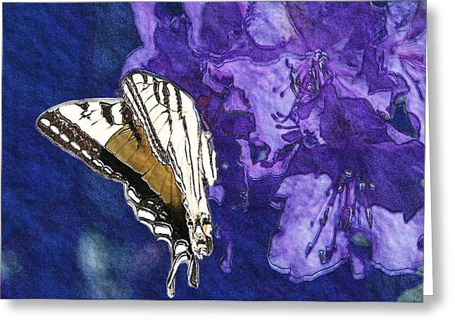Butterfly In Blue Purple And Brown Greeting Card by Belinda Greb
