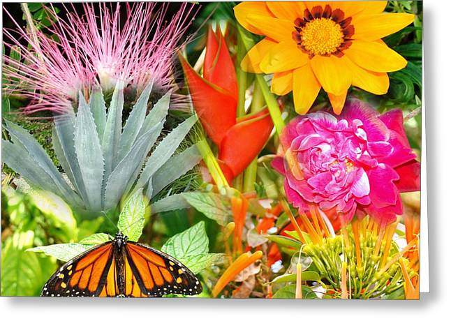 Butterfly In The Flowers Greeting Card by Van Ness