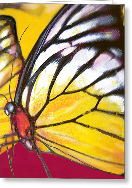 Butterfly - Insect Stylised Pop Art Drawing Potrait Poser Greeting Card by Kim Wang