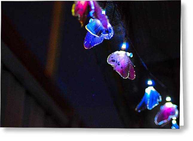 Greeting Card featuring the photograph Butterfly Lights Hanging At Night  by Naomi Burgess