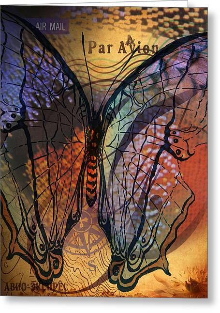Butterfly Love Greeting Card by Gideon Schutte