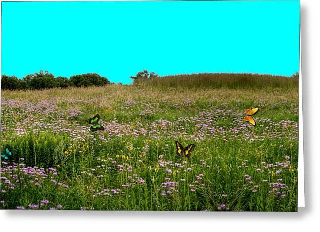 Butterfly Meadow Greeting Card by Larry Trupp
