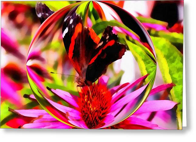 Butterfly Orb Greeting Card by Dan Sproul