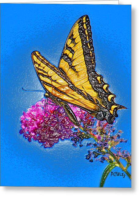 Greeting Card featuring the photograph Butterfly by Patrick Witz