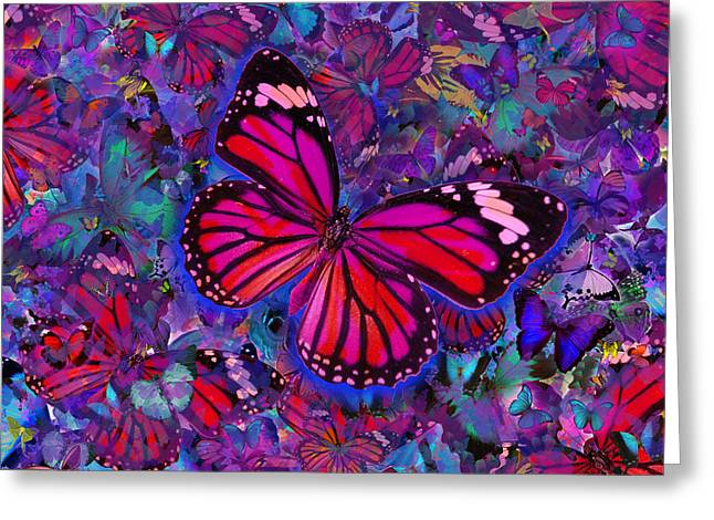Butterfly Red Explosion Greeting Card by Alixandra Mullins