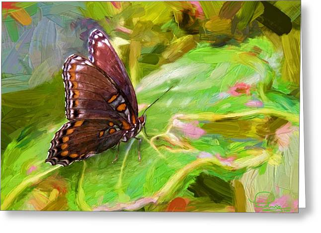 Butterfly - Red-spotted Purple Greeting Card by Ludwig Keck