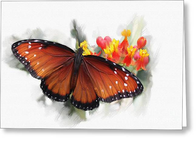 Butterfly Greeting Card by Roger Lighterness