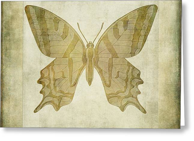 Butterfly Textures Greeting Card by John Edwards