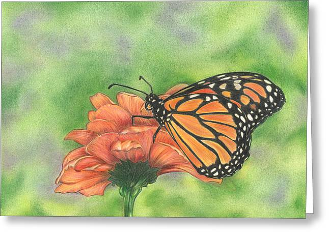 Greeting Card featuring the drawing Butterfly by Troy Levesque