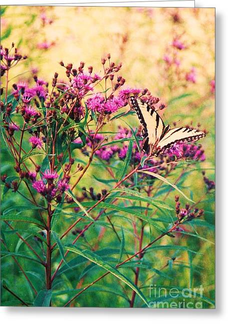 Greeting Card featuring the painting Butterfly Wildflower by Eric  Schiabor