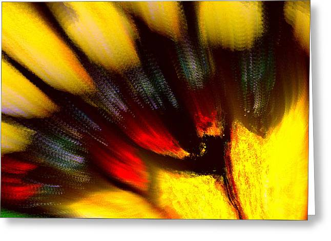 Butterfly Wing Pastel Greeting Card