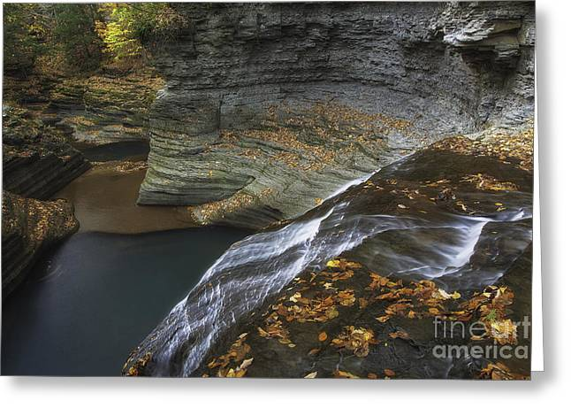Buttermilk Falls In Autumn I Greeting Card by Michele Steffey