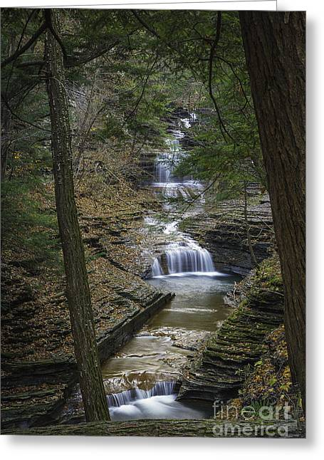 Buttermilk Falls In Autumn IIi Greeting Card by Michele Steffey