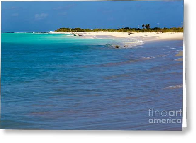 Bvi At Its Best Greeting Card by Beverly Tabet