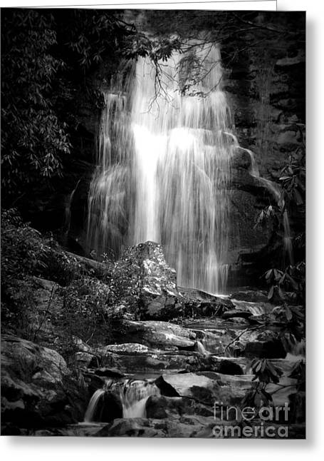 Bw Waterfall Greeting Card