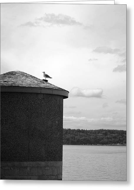 Greeting Card featuring the photograph By The Water by Kjirsten Collier