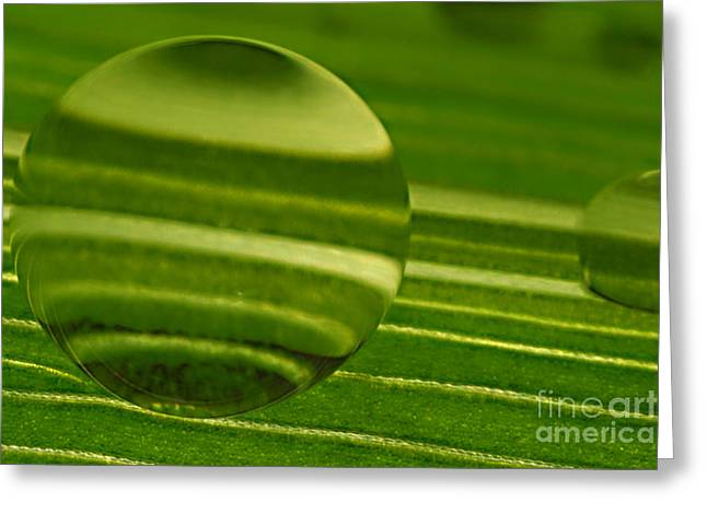 C Ribet Orbscape Green Jupiter Greeting Card