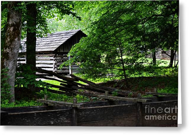 Cabin In The Smokey Mountains Greeting Card by Eva Thomas